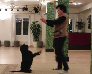 Tanzschule.jpg