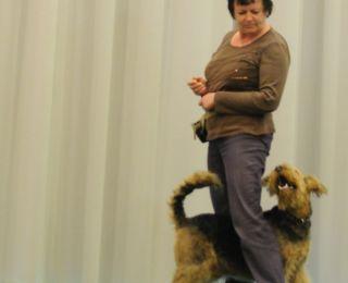 Dogdance 1.jpg